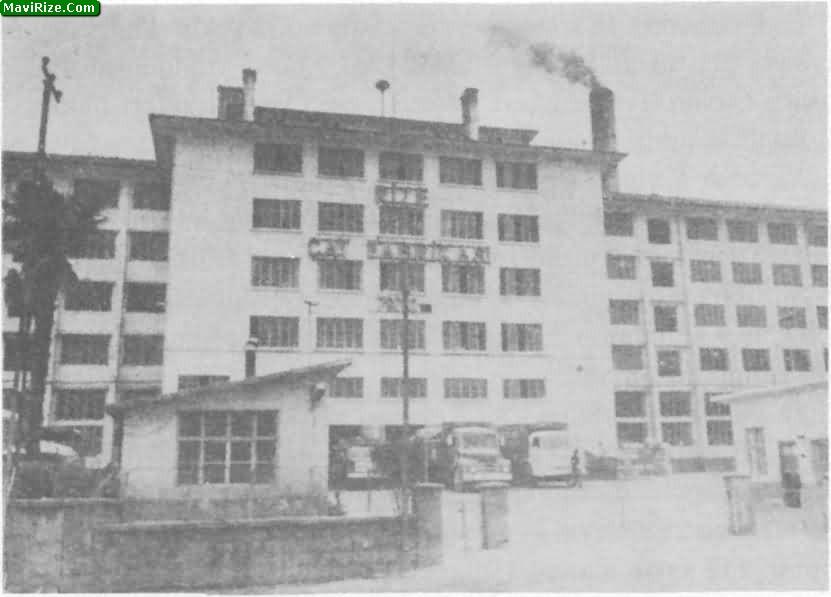 Türkiyede Çay Üretimi, İlk Çay Fabrikası ve Tesisleri